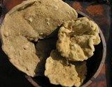 Elephant Ear Sponges in a wooden bowl