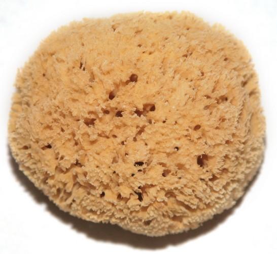 honeycombsmall
