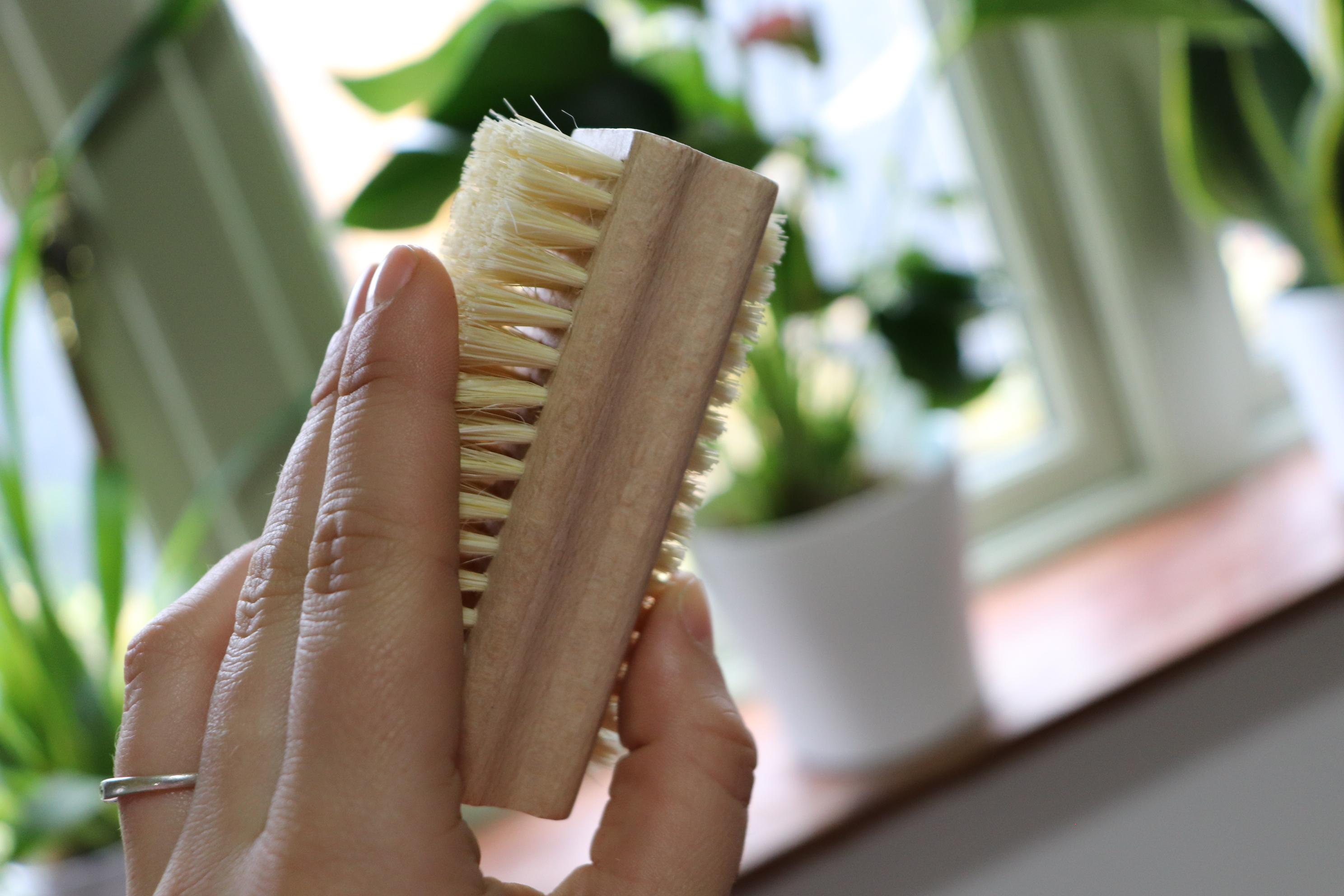 Nail brush of beech wood